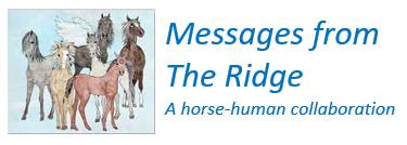 MessagesfromTheRidge