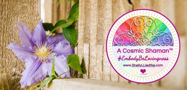 Awaken to the Divine in You with A Cosmic Shaman™